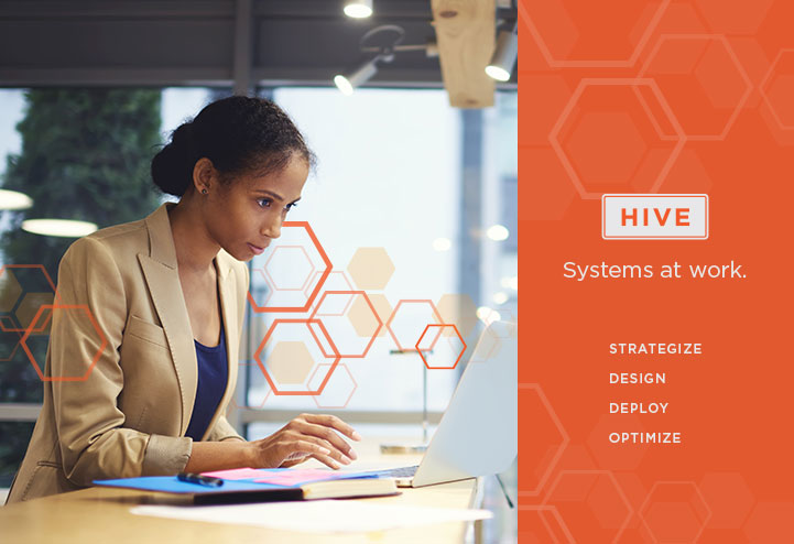 Rycom HIVE system integration services